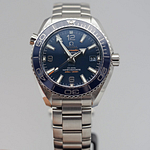 Omega Seamaster Planet Ocean 600M 39.5mm CO-Axial Master Chronometer Steel On Steel Blue
